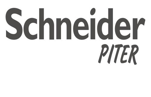 Интернет магазин schneider-piter.ru: розетки, выключатели, автоматика и щиты.